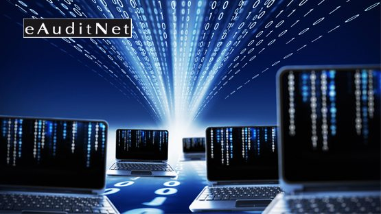 web based auditing system eauditnet nadcap qml